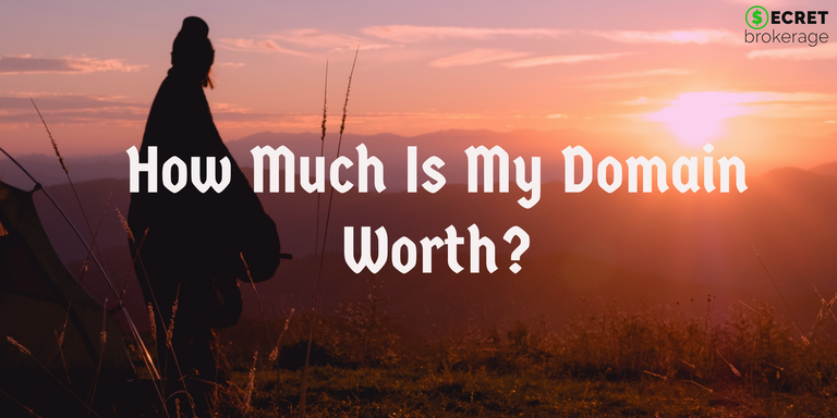 How much is my domain name worth?